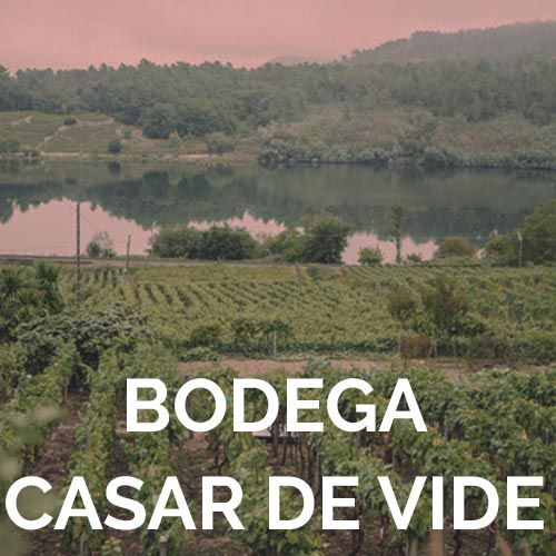 CASAR DE VIDE WINERY